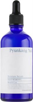 Увлажняющая сыворотка для лица Pyunkang Yul Moisture Serum, 100 мл - фото 13977
